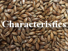 Warminster Product Characteristics
