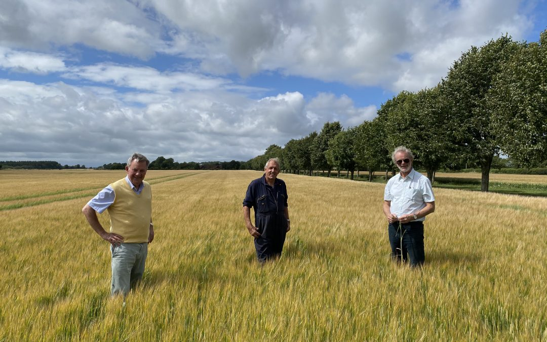 Edition 29: Friends of Warminster Maltings