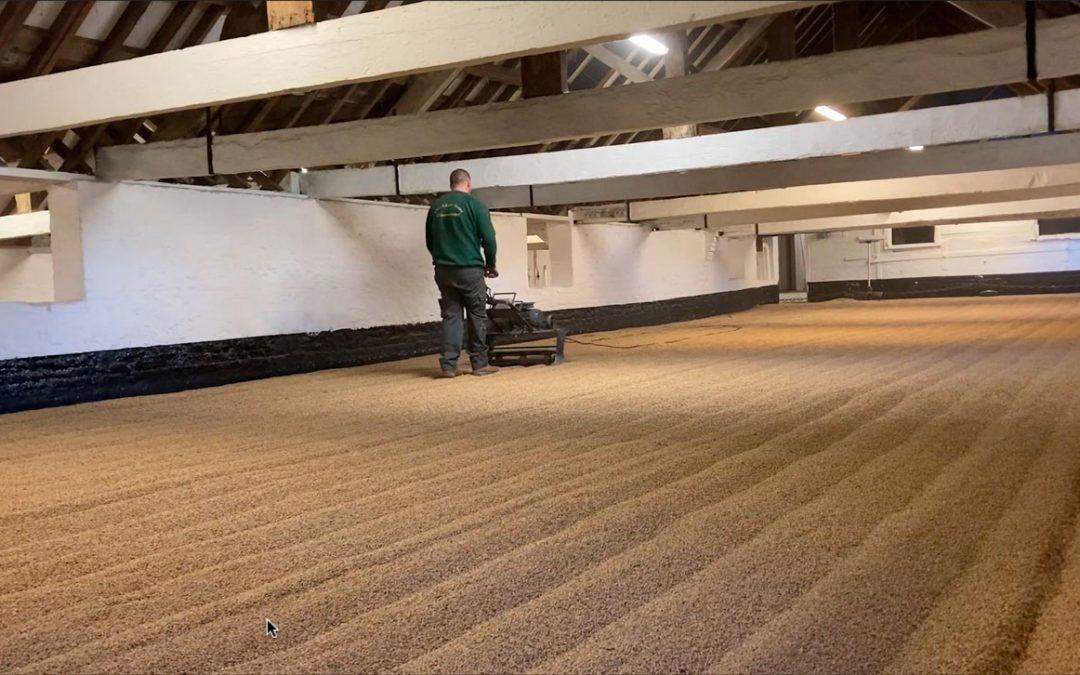 Warminster Maltimgs - Germination Floor